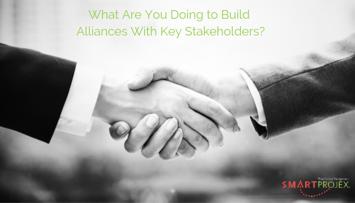 build alliances with key stakeholders
