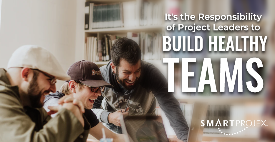 It's the Responsibility of Project Leaders to Build Healthy Teams!